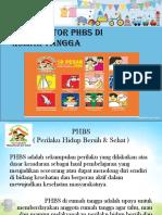 10 Indikator Phbs Di