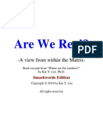 Are We Real - A View From Within the Matrix