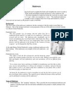 makiwara.pdf
