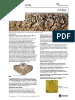 fact-sheet-brachiopods.pdf