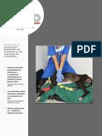 cv_61_Revista_completa.pdf