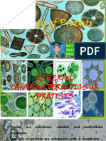 Diversity of Protists by Resty Samosa Maed Biology 160212061608