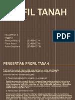 Profil Tanah Kelompok(01)