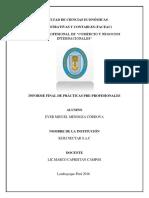 Informe Final Practicas 1