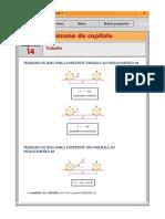 rv1_14.pdf