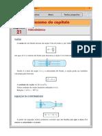 rv1_21.pdf