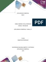 Inteligencia Comercial Fase 1.docx