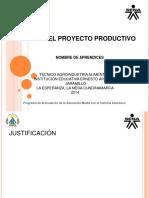 Presentacion Proyectos Productivos (2)