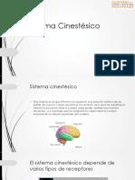 Sistema Cinestésico