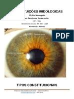 Constituição cursos e atendimentos.pdf