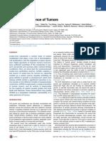 Acetate Dependence Tumors
