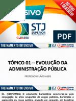 Flávio Assis - Treinamento Intensivo STJ - EVOLUÇAO DA APU STJ