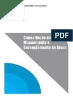 mapeamento.pdf