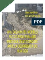 Modelo Computacional FLO-2D.pdf