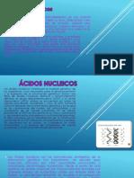 Acidos Nucleicos Mario m