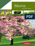 Download_Hausbaum-Broschuere_12.pdf