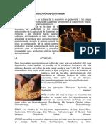 Las Fuentes de Producción de Guatemala