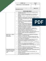 Matriz de Roles y Responsabilidades Actualizada (2)