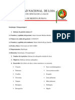 Informe de RX Semiología