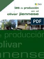Costes de Producción en El Olivar Jienense