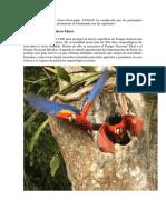 10 Areas Protegidas de Guatemala