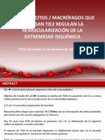 Presentación (Monocitos, TIE 2 Monocitos, Transplantes Xenogenicos, Fisiopato Del Dolor,,,)