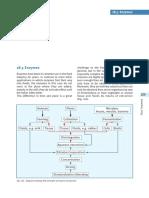 FoF_Kap_18-5.pdf