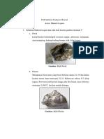 PraPraktikum Endapan Mineral