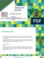 Sistema de Proteccion Social BRASIL