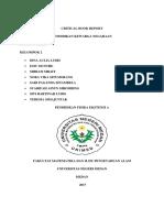 Crical Book Report