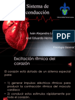 Sistemadeconduccin 140310134717 Phpapp02 (1)