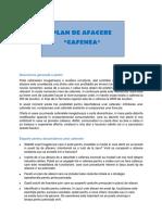 Plan de Afacere Cafenea.doc