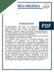 INFORME-3-DE-ORGANICA ULT111.docx