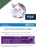 AMR Report Web Slide Set