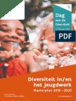 Masterplan diversiteit in het jeugdwerk