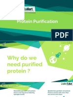 proteinpurification-170915083449