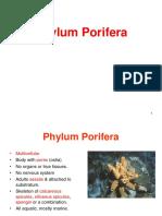 porifera-130414083319-phpapp02