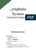 Lymphatic Vessel