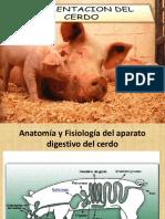 Alimentacion Del Cerdo