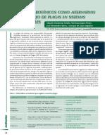 13-insecticidas.pdf