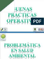 Saneamiento Básico Industrial - Buenas Practicas Operativa - Control de Plagas