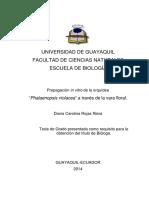 Tesis Propagación in vitro de la orquidea Phalaenopsis vilacea a través de la vara floral.pdf