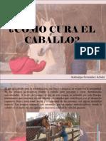 Atahualpa Fernández Arbulú - ¿Cómo Cura El Caballo?