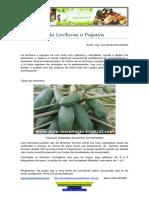 Lechosa o Papaya, su cultivo.pdf