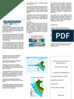 Ecorregión Del Mar Frío de La Corriente Peruana