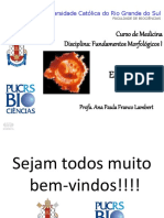 1 Aula Introdução Embriologia