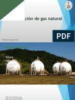 Expo Produccion de Gas