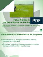 Rice Presentation Newag
