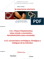4.3. Helmintos de Importancia Veterinaria (1)