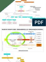 DESARROLLO ORGANIZACIONAL-ORGANIZADORES GRAFICOS
